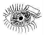 trachome_01.jpg (17304 octets)